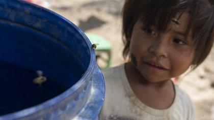 Una niña wichí de Salta observa un barril con agua estancada (Adrián Escandar)