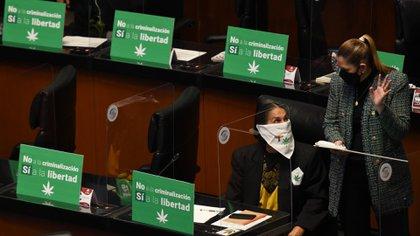 El Senado aprobó el dictamen con el apoyo de Morena, sus aliados y también de una buena parte de la oposición (Foto: Twitter @senadorcasimiro)