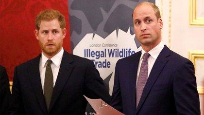 La brecha entre los príncipes hermanos comenzó a abrirse cuando William dio a Harry consejos sobre Meghan, que Harry no tomó bien (Shutterstock)