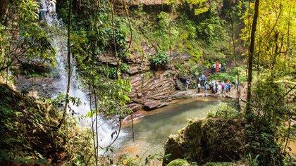 Los senderos están salpicados de cascadas que descienden desde cuatro parques nacionales naturales: Tinigua, Sumapaz, Pichachos y Sierra de la Macarena. (Fotos Mauricio Enriquez/ PNUD)