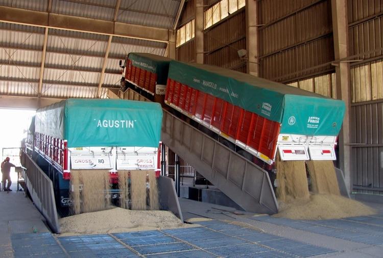 La empresa fue la sexta agroexportadora en 2019