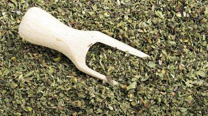 La exportación de té a Estados Unidos está frenada por el coronavirus (Shutterstock 162)
