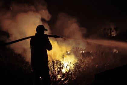 Bomberos y voluntarios intentan apagar el fuego, en la localidad de Porto Jofre, localizado en el municipio de Poconé, estado de Mato Grosso (Brasil). EFE/Carlos Ezequiel Vannoni/Archivo