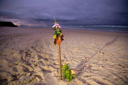 En las costas de Australia le rindieron un homenaje (EFE)