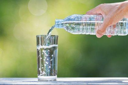 Los adultos es entre 2 a 2,5 litros de agua, los niños en edad escolar serían 1 litro de agua por día, que sería un equivalente a 5 vasos (Shutterstock)