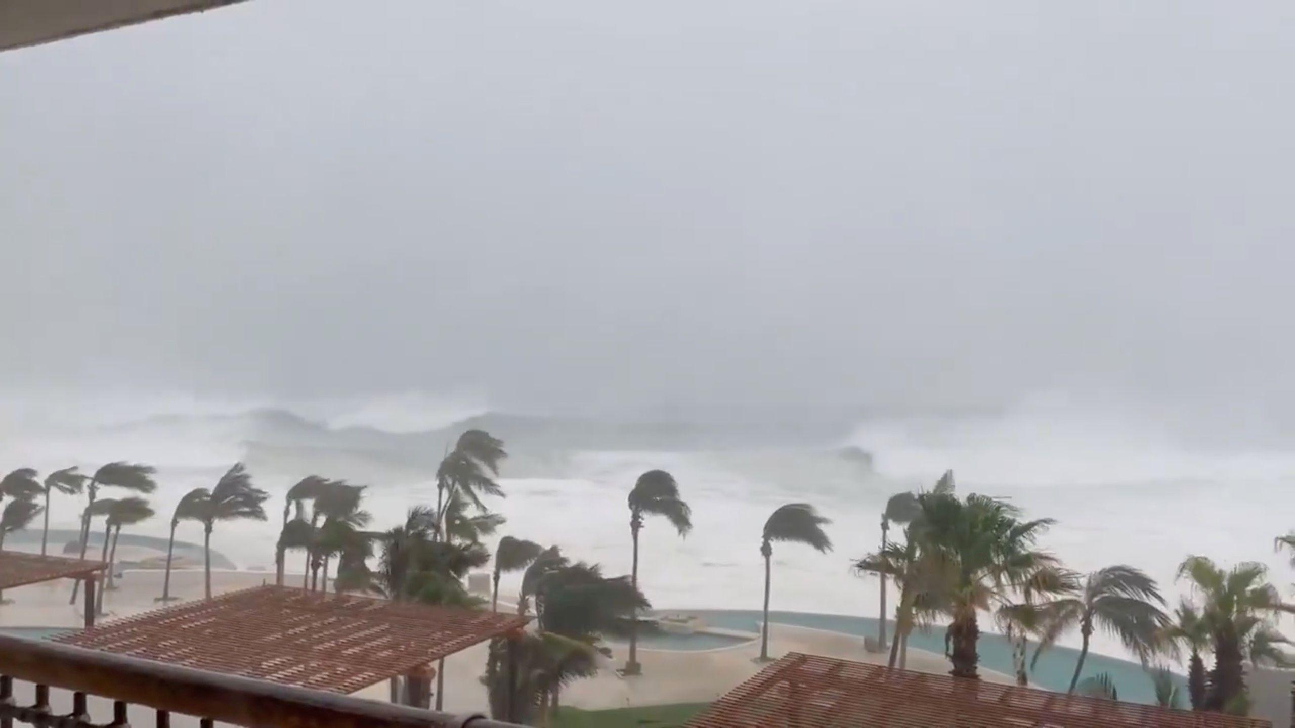 Las palmeras se balancean en medio de fuertes lluvias mientras el huracán Olaf azota Cabo San Lucas, Baja California, México, el 9 de septiembre de 2021, en esta imagen fija tomada de un video de las redes sociales Foto: (Dominique Torres Williams/via REUTERS)
