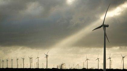 Molinos eólicos (EFE/Mario Martínez/Archivo)