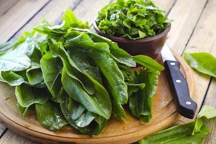 Los vegetales de hojas verdes son buenos para preservar la memoria y la visión (Getty)