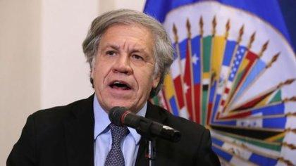Luis Almagro fue reelegido al frente de la OEA como secretario general por otros cinco años (Reuters)