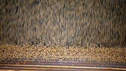 Granos de soya se vierten de un camión en una planta de almacenamiento de la empresa Grobocopatel Hermanos en Carlos Casares. Argentina. Foto de archovo 16 abr. REUTERS/Agustin Marcarian