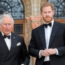 Mandatory Credit: Photo by Tim Rooke/Shutterstock (10187089al) Prince Charles and Prince Harry 'Our Planet' Netflix TV show premiere, National History Museum, London, UK - 04 Apr 2019