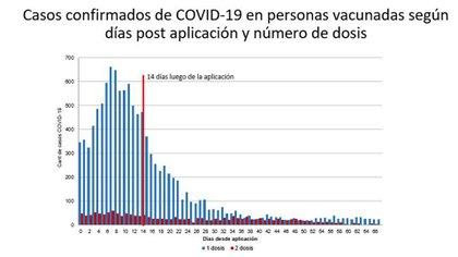 El gráfico que difundió el Ministerio de Salud