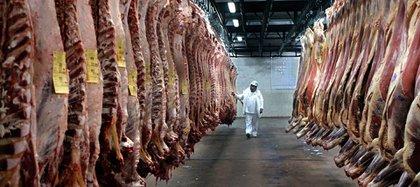 El gobierno prorrogó hasta fin de año la suspensión de las retenciones a las exportaciones de cueros. Lo anunció mediante un Decreto publicado en el Boletín Oficial (AFP)