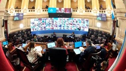 La imponente imagen de la primera sesión del Senado virtual en la historia argentina