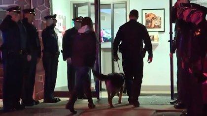 Tazer estaba especializado en la detección de narcóticos, y había recibido numerosas condecoraciones (Foto: captura de pantalla video Tribune/Fox43)