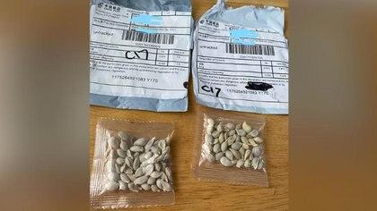 Muchos estadounidenses en todos los estados recibieron semillas que nunca habían ordenado en paquetes de China Post (Departamento de Agricultura del estado de Washington)