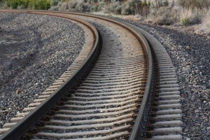 El Tren Maya es una de las obras insignia de la administración encabezada por Andrés Manuel López Obrador (Foto: Archivo)