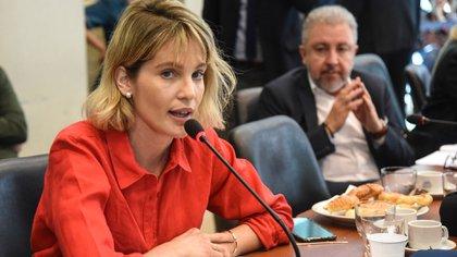"""Liz Solari pidió """"multas económicas considerablemente altas"""" a quienes provoquen maltrato animal y solicitó que el delito no sea excarcelable. (Fotografía HCDN / Gustavo García)"""