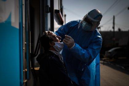 Desde que comenzó la pandemia, nuestro país se caracterizó por la baja cantidad de testeos que realiza en comparación con sus vecinos, por ejemplo - EFE/Juan Ignacio Roncoroni/Archivo