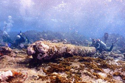 Es el número 70 registrado en la reserva de la biosfera de Banco Chinchorro, ubicado en el Pacífico frente a la costa de Quintana Roo   (Foto: EFE/INAH)