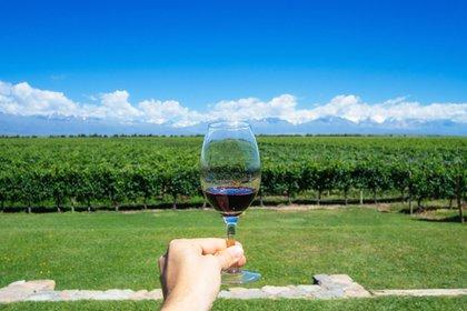Entre 2002 y 2012 las exportaciones de vino crecieron impulsadas por un tipo de cambio favorable y el fenómeno del Malbec. Ahora se le presentan nuevas oportunidades (Shutterstock)
