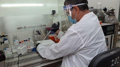 """La idea, según el experto, """"es reemplazar mayormente las pruebas de PCR, especialmente en los lugares donde se necesitan pruebas masivas"""" (Reuters)"""
