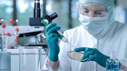 Finalizado el tratamiento con fines reproductivos suelen quedar embriones criopreservados en los centros de salud (Getty)