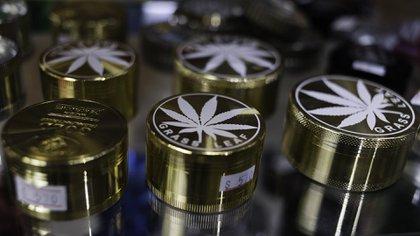 Picadores de cannabis, en venta en un grow shop uruguayo (Adrián Escandar)