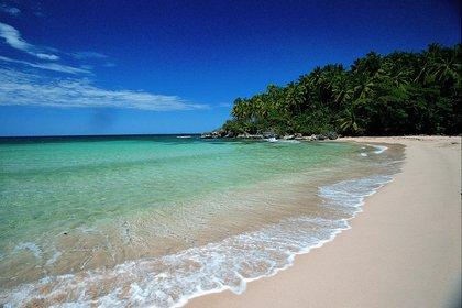 15/04/2013 Playa en Punta Cana (República Dominicana) ESPAÑA EUROPA MADRID ECONOMIA TURISMO REPUBLICA DOMINICANA