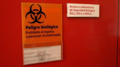 Desde el comienzo de la pandemia se secuencian muestras del virus SARS-CoV-2 en el Instituto Malbran (Thomas Khazki)