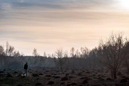 Un hombre camina en la escena del incendio forestal en la zona de exclusión de Chernobyl (Foto por Volodymyr Shuvayev/ AFP)