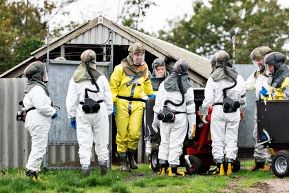 Empleados de las autoridades danesas usando equipo protector antes de sacrificar a visones responsables de una serie de brotes de coronavirus (Ritzau Scanpix/Henning Bagger via REUTERS)