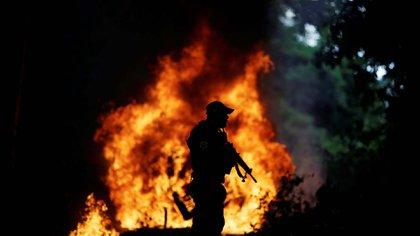 Human Rights Watch denunció que grupos criminales destruyen el Amazonas con total impunidad (REUTERS/Ueslei Marcelino)