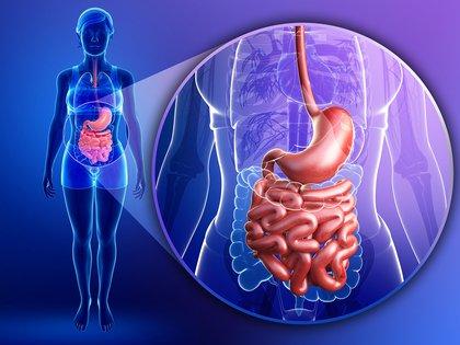 La cápsula endoscópica es elegida0 por sus beneficios y simplicidad a la hora de analizar el tracto digestivo (Getty)