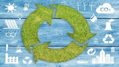 La biomasa utilizada por la central San Alonso abastecerá al Sistema Interconectado Nacional.