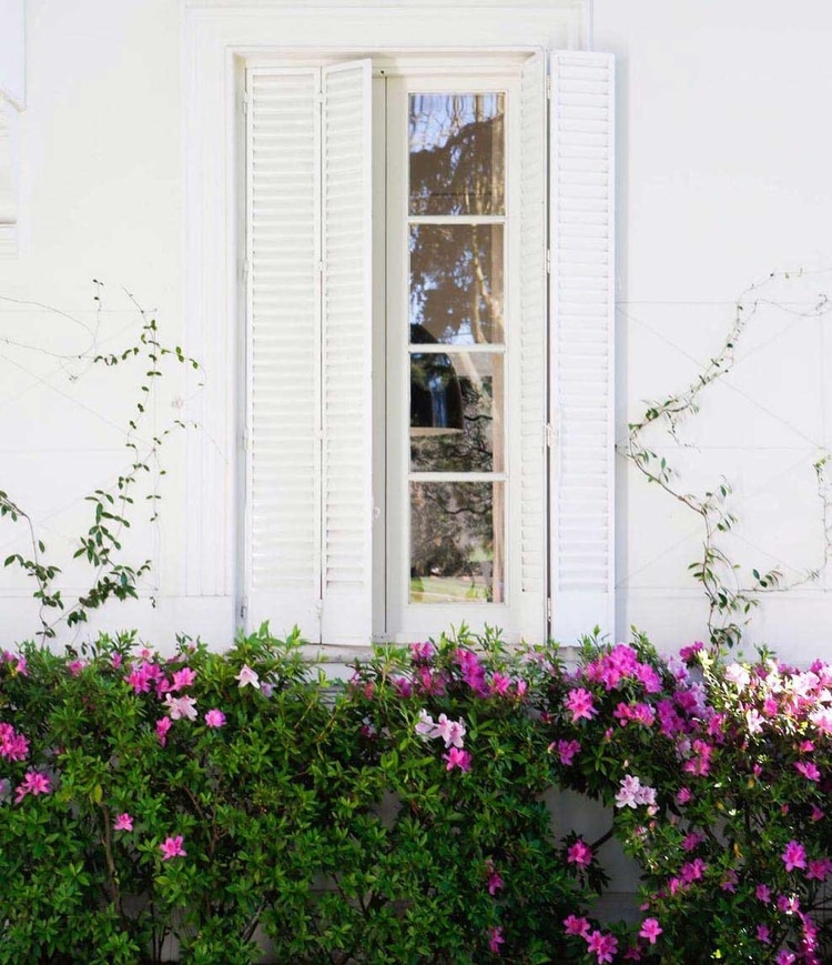 Juliana Awada se interesó personalmente en las flores de la Quinta