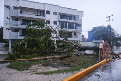 Imágenes de los destrozos que causó Delta en Cancún (Foto: AP/Victor Ruiz Garcia)