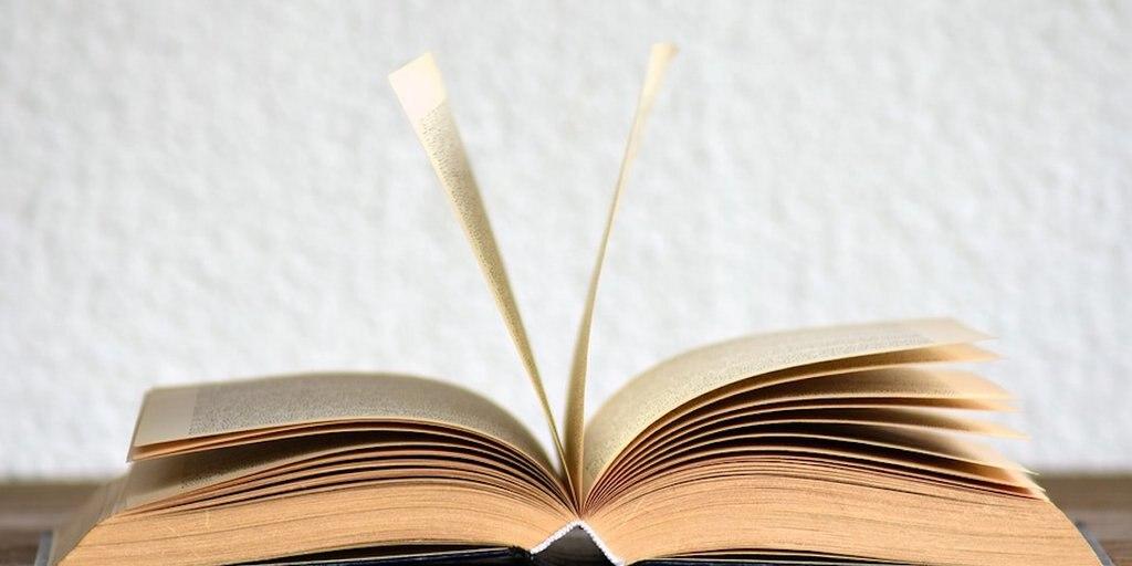 Polémica A Raíz De La Piratería De Libros En Facebook Infobae