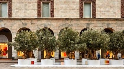 """""""The Green Life"""" un evento centrado en el diseño y su relación con la naturaleza, la sostenibilidad y todo lo ecológico, la instalación se apodera de las ventanas, el interior y las áreas exteriores de la tienda principal de la Rinascente en la Piazza Duomo. (Crédito: Prensa Sabine Marcelis)"""