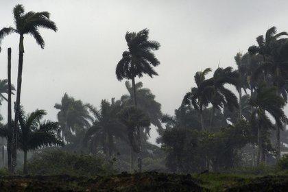 Según el Centro Nacional de Huracanes de Miami, el viento sostenido del huracán Iota ya es de 225 kilómetros por hora, con rachas aún más elevadas, con una presión mínima de 935 milibares. EFE/Archivo