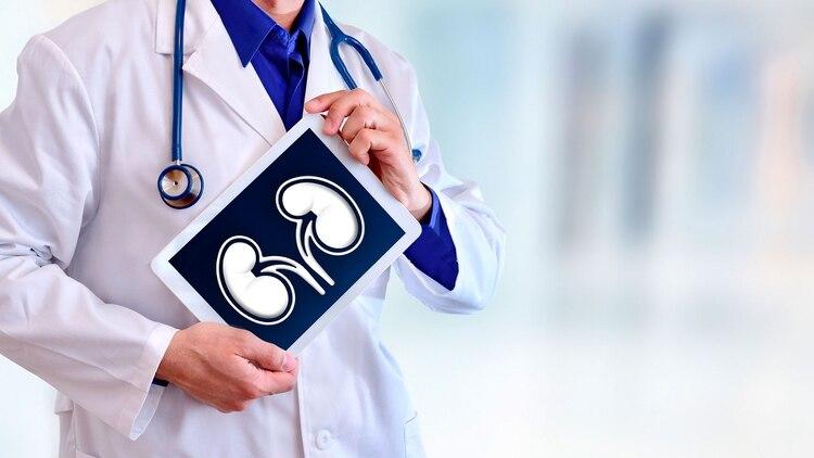En la actualidad, más de 5.300 personas esperan en el país por un trasplante renal (Shutterstock)