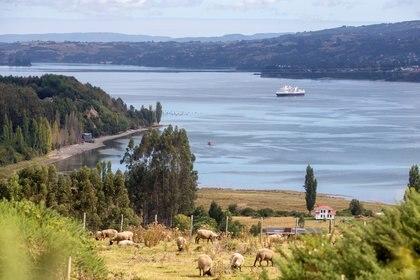 Chiloé, un destino natural para explorar desde que amanece hasta que anochece (Reuters)