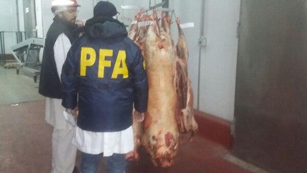 Efectivos de la PFA dentro de la planta del frigorífico del grupo Benetton.