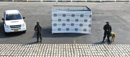 Con la ayuda de Ronny, la Policía Antinarcóticos halló cargamento de cocaína camuflado en cajas de limones. Foto: Policía Antinarcóticos.