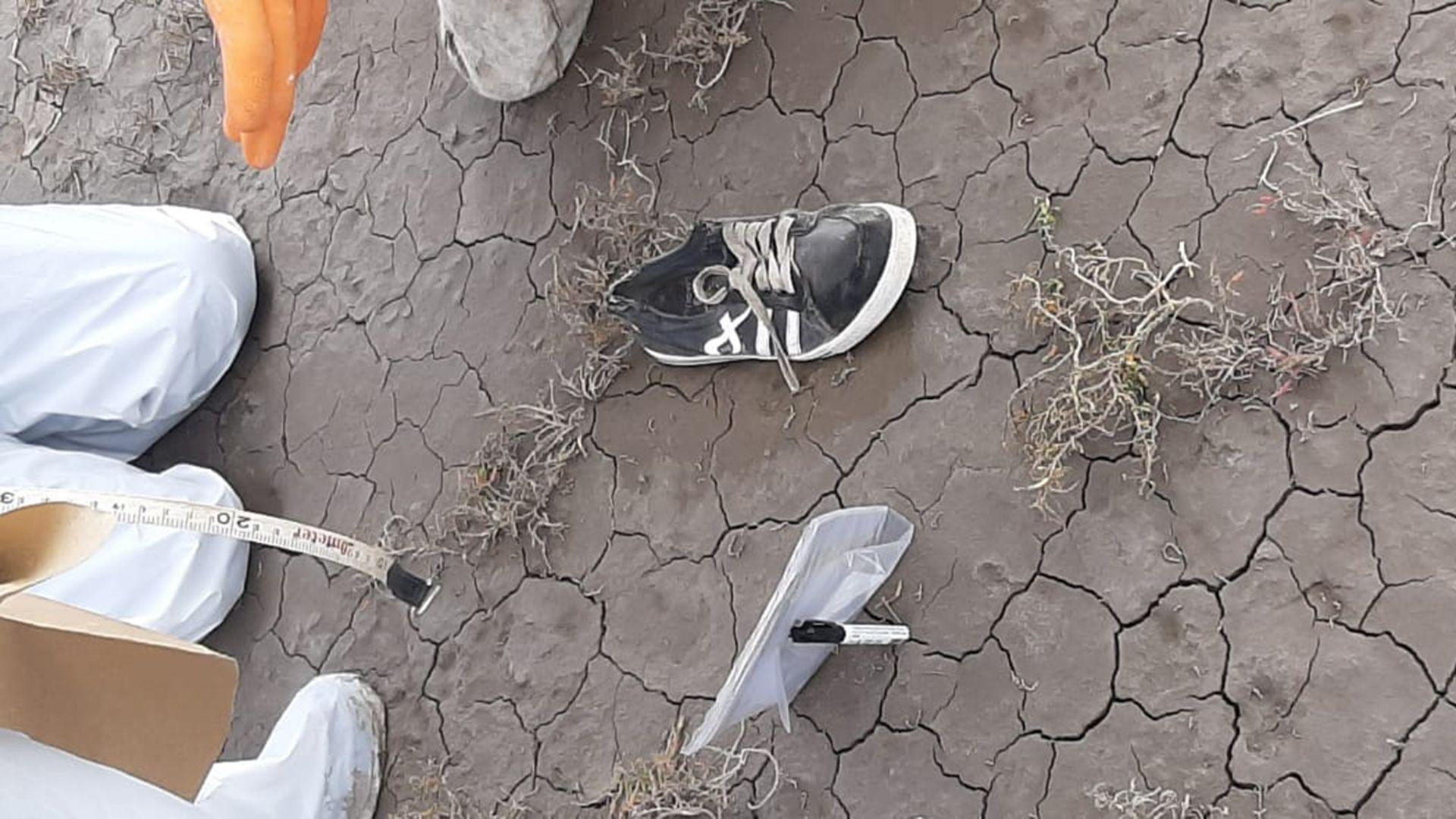 zapatillas de facundo castro