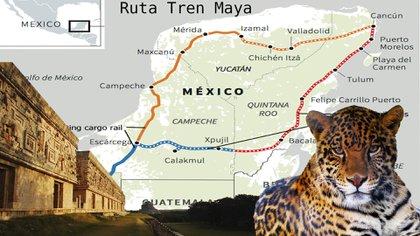 El Tren Maya recorrerá 1,500 kilómetros aproximadamente y pasará por los estados de Chiapas, Tabasco, Campeche, Yucatán y Quintana Roo (Fotoarte: Steve Allen/Infobae)