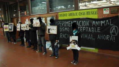 El movimiento contra la experimentación en animales se pronuncia a nivel mundial, pese a ello son pocos los países que optaron por erradicar estas practicas. En Argentina se busca regularla y no prohibirla.