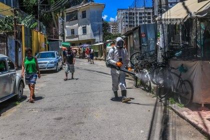 Residentes de la favela de Santa Marta, en el barrio de Botafogo, Río de Janeiro, en labores de desinfección el 28 de noviembre. (ELLAN LUSTOSA / ZUMA PRESS / CONTACTOPHOTO)