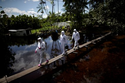 Trabajadores de la salud caminan por un puente para acceder a una casa en la comunidad ribereña Pinheiro, en la isla de Marajo, estado de Pará, el 6 de junio de 2020. (REUTERS/Ueslei Marcelino)