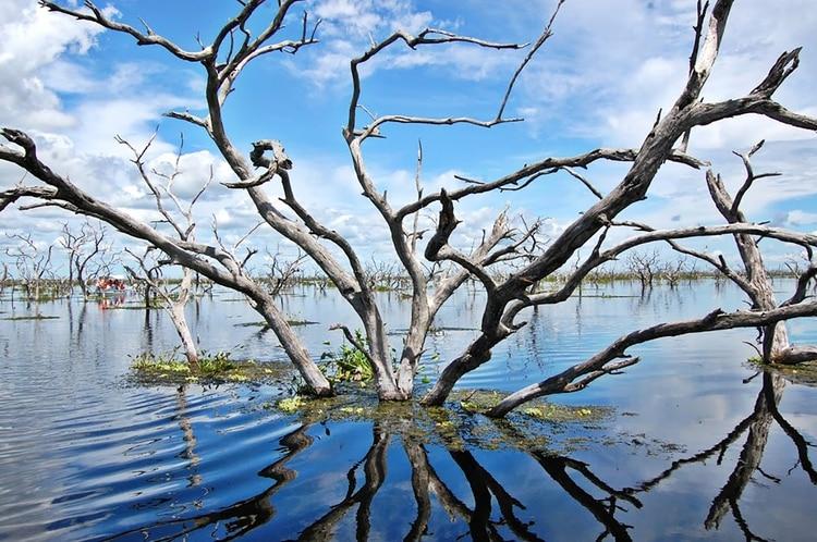 En la colorada tierra formoseña, el bañado La Estrella es el segundo humedal más grande del país (Turismo Formosa)